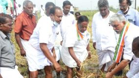90-of-agricultural-lands-in-pondicherry-affected-by-continuous-rains