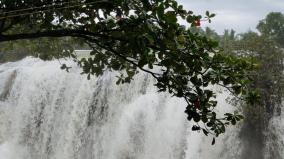 due-to-the-rains-in-kumari-the-flood-danger-level-in-pechipparai-and-perunchani-dams-has-been-removed