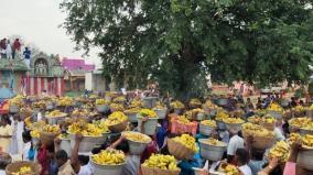 batlagundu-bannana-festival