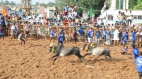 festival-goes-near-sivagangai