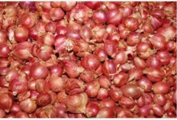 onion-in-karaikudi-for-sale-at-rs-120-per-kg