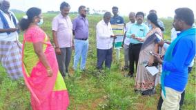 tenkasi-agriculture-officers-inspect-crop-destruction-due-to-rains