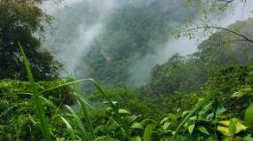 kanyakumari-forest-case-hc-bench-sends-notice-to-centre-state