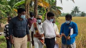 district-collector-who-went-to-the-field-of-the-farmers-who-had-applied-for-relief-due-to-rain-damage-and-inspected-it-in-a-two-wheeler