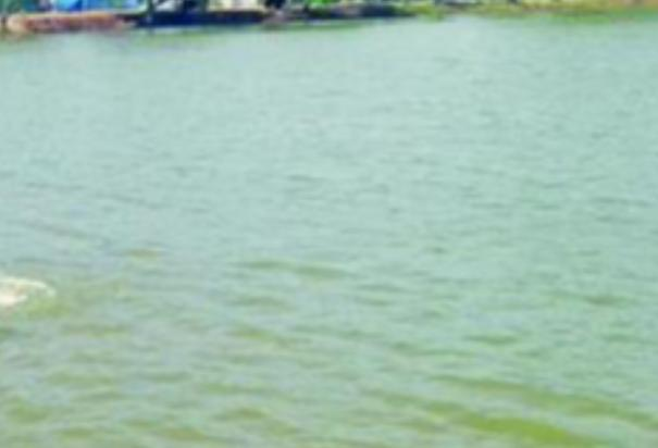 2-boys-drown-in-pond-near-manamadurai