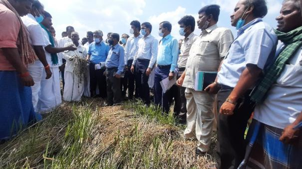 central-team-inspection-at-tanjur