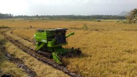 intensity-of-paddy-harvesting-activities-in-tenkasi-district