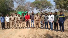 wildlife-survey-in-hosur-forest-reserve-intensity-of-foresters-in-final-phase
