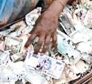 termites-ate-rupees-notes