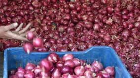 onion-price