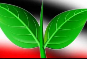 unripe-double-leaf-in-thiruvannamalai-aiadmk-has-not-tasted-victory-in-the-history-of-the-assembly-elections