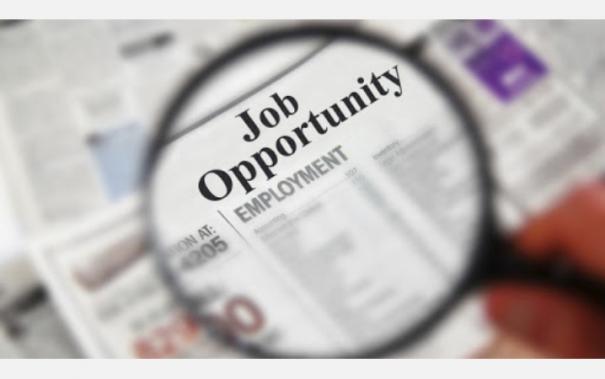 employment-news
