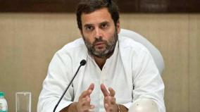 govt-privatising-profit-nationalising-loss-says-rahul-supports-bank-strike