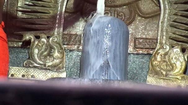 pilva-year-tamil-newyear-palangal-magaram