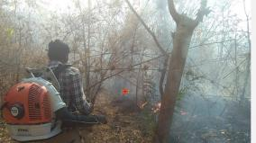 wildfire-in-urigam-wildlife-sanctuary-intensification-of-forest-fires-awareness-campaign-among-the-people