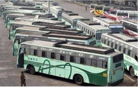 special-buses-for-election