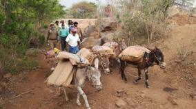 voting-machines-loaded-on-donkeys-to-dharmapuri-hill-villages