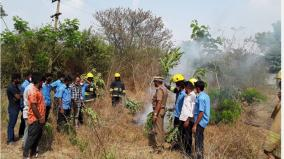 how-to-protect-wildlife-and-natural-resources-from-wildfires-training-with-demonstration-at-hosur-wildlife-sanctuary