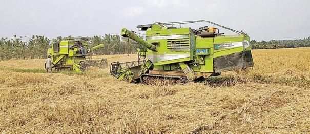 paddy-harvester