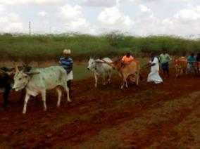 farming-festival-in-tanjur