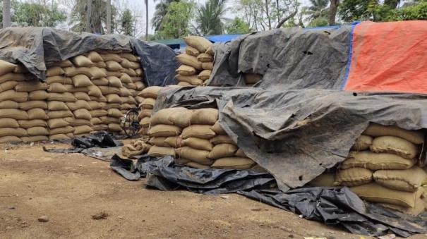 quality-tarpaulin-for-open-field-paddy-warehouses-government-request