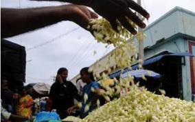 corona-spread-brings-down-jasmine-price-in-madurai-markets