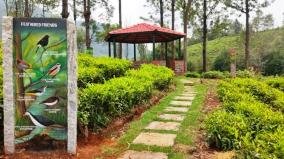 tea-factories-becoming-pre-eminent-green-factories-in-the-nilgiris