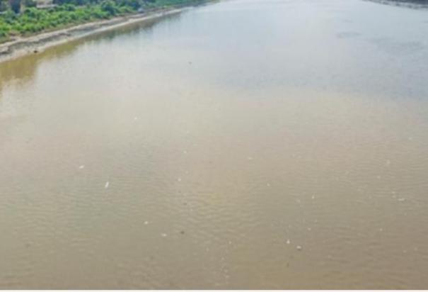 two-killed-after-drowning-in-vaigai-river-near-theni
