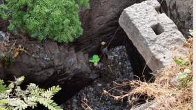 rescue-of-a-dog-that-lived-for-3-years-in-a-100-feet-deep-well-near-tirupur