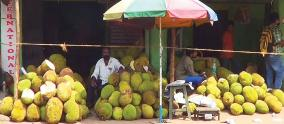 fruit-traders
