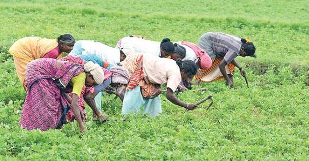 agricultural-works