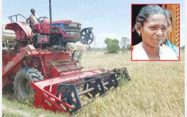 paddy-harvesting-work