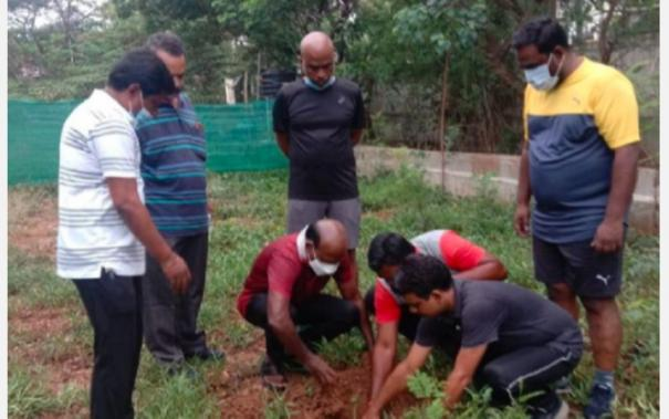 minister-plants-tree-in-court-premise
