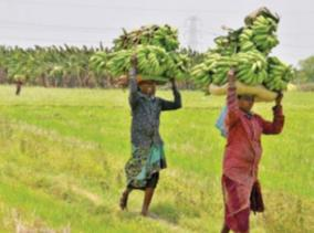 tn-government-announces-helpline-numbers-for-farmers
