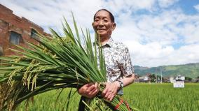 china-s-hybrid-rice-father-and-india
