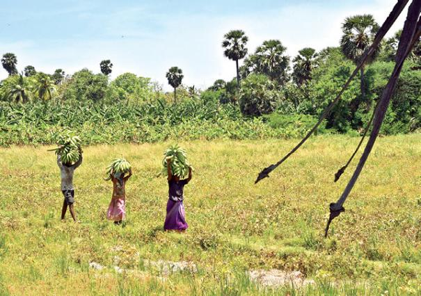 farmers-of-thoothukudi-district
