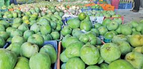 falling-mango-prices