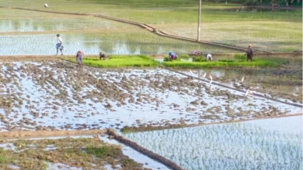 kanyakumari-agriculture-irrigation
