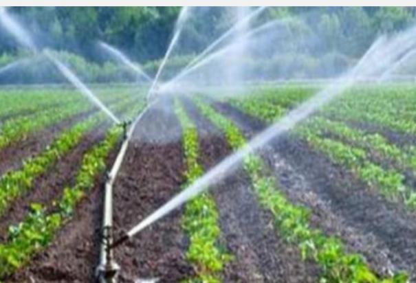 government-subsidy-for-micro-irrigation-facility-coimbatore-farmers-can-apply