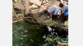 missing-boys-found-dead-in-well-near-karur