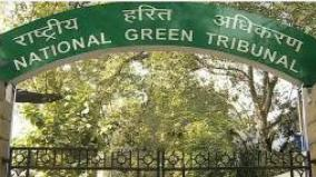 green-tribunal