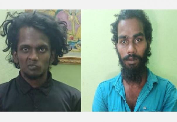 two-arrested-for-planting-ganja