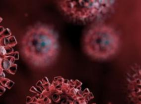 251-persons-tested-positive-for-corona-virus-in-puducherry-today