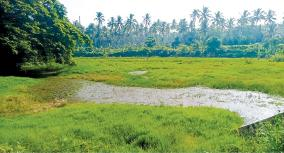 impact-on-agriculture-due-to-inability-to-save-water