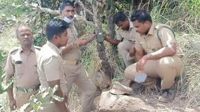 theni-forest-officials-are-in-search-of-leopard