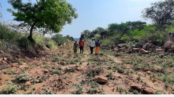 occupancy-of-300-acres-of-government-land-worth-crores-of-rupees-near-udumalai-revenue-department-reluctant-to-take-action