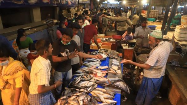 vellore-fish-market-opening-after-long-days-fish-lovers-gathered-without-a-break