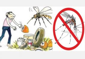 prevent-the-spread-of-dengue-mosquitoes-remove-stagnant-water-chennai-corporation-request