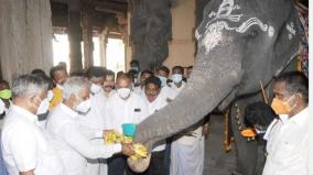 order-to-hold-herbal-balm-preservation-ceremony-for-nellaiyappar