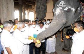 swami-nellaiyappar